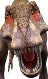 Cercano más cercano del Tyrannosaurus un que Fotografía de archivo libre de regalías