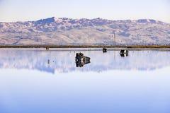 Cercare i ciechi, traccia della baia di Moffett, Mountain View, sud San Francisco Bay, California fotografia stock libera da diritti