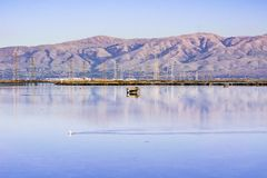 Cercare i ciechi, traccia della baia di Moffett, Mountain View, sud San Francisco Bay, California fotografie stock