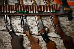 Cercare i fucili con la bandoliera di cuoio con munizioni Immagine Stock Libera da Diritti
