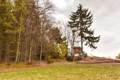 Cercare si nasconde nella caccia della foresta mette in serbo La torre di legno Fotografie Stock