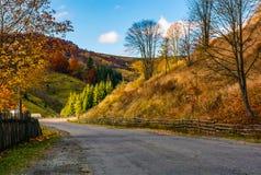 Cercas ao longo da estrada na área rural pitoresca Fotos de Stock Royalty Free