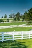 Cercas da exploração agrícola do cavalo em um dia claro Fotografia de Stock Royalty Free