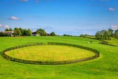 Cercas de la granja del caballo Imágenes de archivo libres de regalías