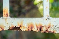 Cercas oxidadas do metal Imagem de Stock Royalty Free