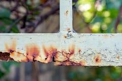 Cercas oxidadas do metal Fotografia de Stock Royalty Free