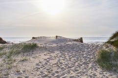 Cercas sobre a duna fotografia de stock royalty free