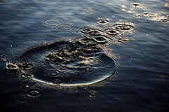 Cerchi dell'acqua di Amasing nell'alba Immagini Stock