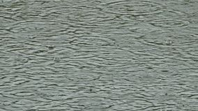Cerchi della tempesta di pioggia sull'acqua royalty illustrazione gratis