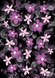 Cerchi e fiori sui precedenti neri Fotografia Stock Libera da Diritti