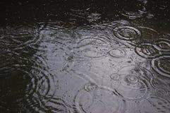Cerchi sull'acqua dalle gocce di pioggia fotografia stock libera da diritti