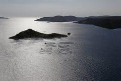 Cerchi sulla superficie del mare Fotografie Stock