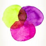 Cerchi variopinti dell'acquerello Fotografia Stock