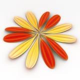 Cerchio dei petali del Gerbera Immagini Stock