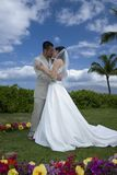 Cerchio del bacio dei fiori Fotografia Stock Libera da Diritti