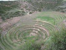 Cerchio di Moray nel Perù Fotografia Stock Libera da Diritti