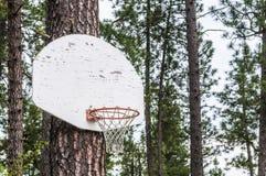 Cerchio di pallacanestro all'aperto della montagna Immagine Stock Libera da Diritti