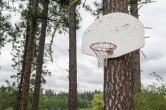 Cerchio di pallacanestro all'aperto della montagna Immagini Stock