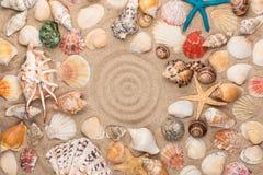 Cerchio fatto della sabbia, del telaio delle conchiglie e delle stelle Con spazio per il progettista Fotografia Stock