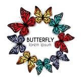 Cerchio ornamentale delle farfalle Immagini Stock Libere da Diritti