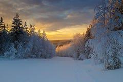 Cerchio polare della natura Fotografie Stock
