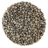 Cerchio verde francese delle lenticchie isolato su fondo bianco Fotografie Stock
