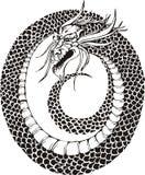 Cercle de dragon Photos libres de droits