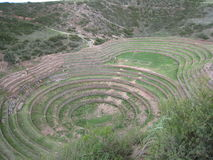 Cercle de Moray au Pérou photo libre de droits
