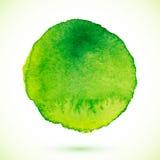 Cercle de peinture d'aquarelle d'isolement par vecteur vert Photographie stock libre de droits
