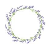 Cercle des fleurs de lavande Photos libres de droits