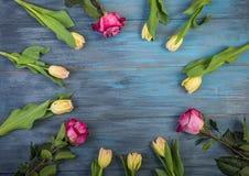 Cercle des fleurs sur le fond bleu images stock