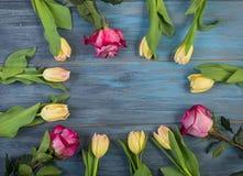 Cercle des fleurs sur le fond bleu photo libre de droits