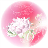 Cercle rose avec des fleurs Photographie stock