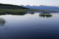 Cercles sur l'eau Images stock
