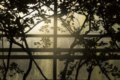 Cerco do pássaro, jardim zoológico de Detroit, Michigan Imagens de Stock