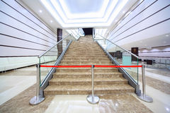 Cerco na escadaria de mármore Foto de Stock Royalty Free
