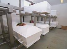 Cercueils images stock