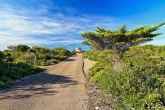 Cerdeña - pequeño camino en la isla de San Pedro imagen de archivo libre de regalías
