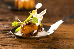 Cerdo caramelizado acompañado por el arroz del jazmín y el curry rojo en una cuchara Fotos de archivo libres de regalías