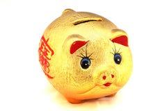 Cerdo chino de la buena suerte Foto de archivo