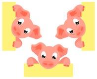 Cerdo colorido de la historieta que lleva a cabo el sistema del cartel libre illustration
