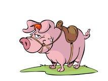 Cerdo con el sadle Imagen de archivo libre de regalías