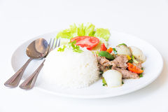 Cerdo con Fried Black Pepper y arroz Imagenes de archivo