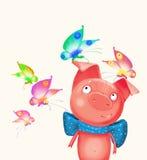 Cerdo con la mariposa Imagen de archivo libre de regalías