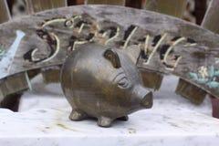 Cerdo de cobre amarillo en mi patio trasero Fotografía de archivo