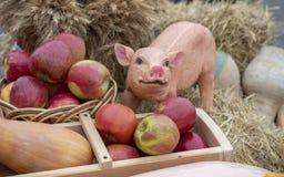Cerdo de la arcilla en el heno con las manzanas, composición foto de archivo
