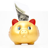Cerdo de la caja de ahorros Fotos de archivo libres de regalías