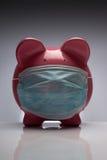 Cerdo de la gripe de los cerdos con la máscara Imágenes de archivo libres de regalías