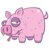 Cerdo de la gripe de los cerdos de la historieta Imagen de archivo