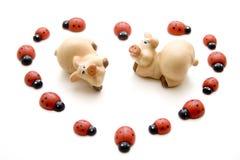 Cerdo de la suerte con el ladybug Imagen de archivo